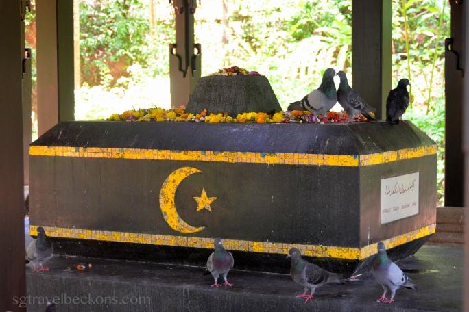 Lovebirds at Keramat Iskandar Shah