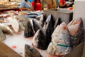 Scenes in a wet market